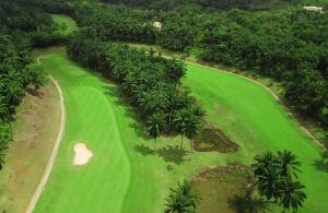 BBGC Golf